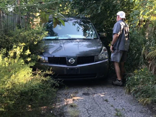 Overgrown CLE alleys raise safety concerns