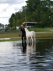 GALLERY: Canton men rescuing animals in NC